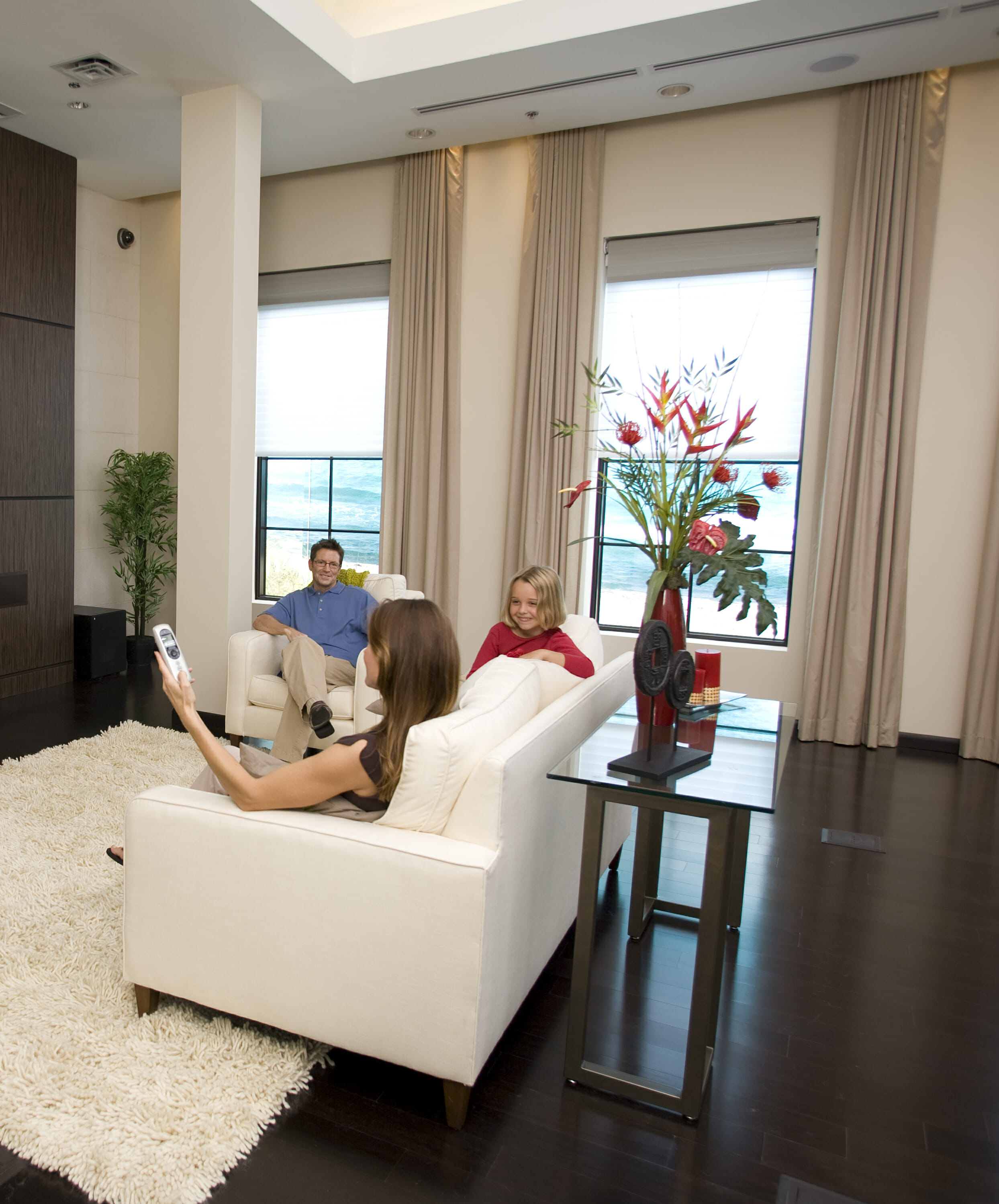 Somfy Automated Window Coverings 3 Blind Mice