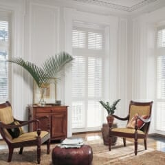 Shutters Allow Perfect Light Control