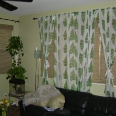 Woven Wood Shades With Curtains