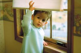 Window Shades 3 Blind Mice Window Coverings