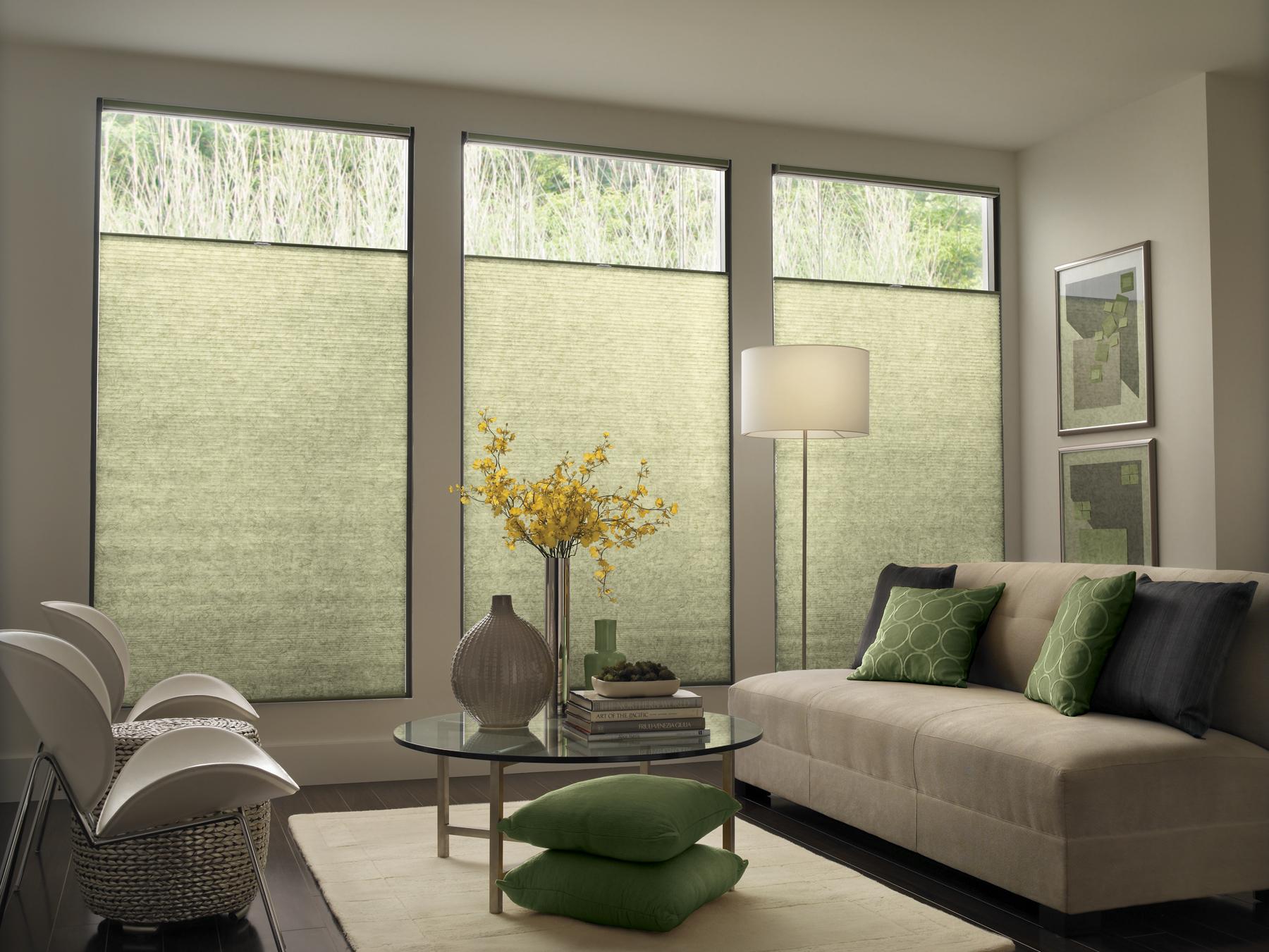 Perceptions Room Darkening Sheers 3 Blind Mice Window