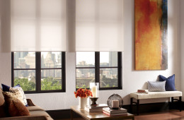 QMotion Automated Shades