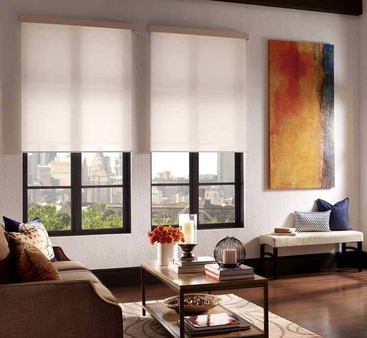 Qmotion shades 3 blind mice window coverings for Motorized blackout roller shades