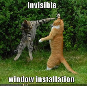 Window Treatment Installation by Cats