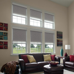 blackout dual roller shades from lutron