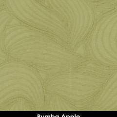 Rumba Apple