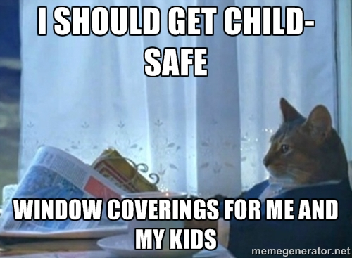 ThinkingCat 10 window covering safety memes for pet and child protection