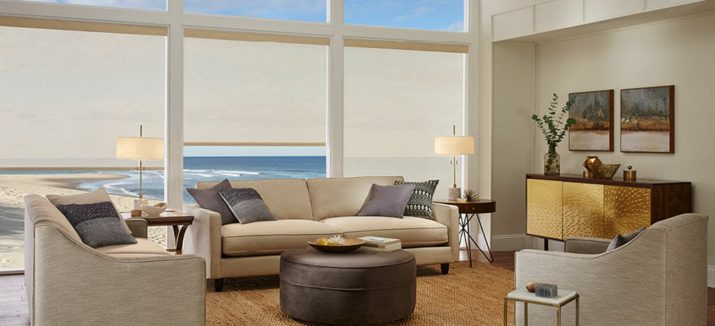 Roller Shade in Living Area